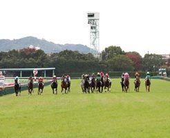 京都競馬場予想