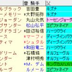 京成杯2020 枠順確定ラップギア適性値
