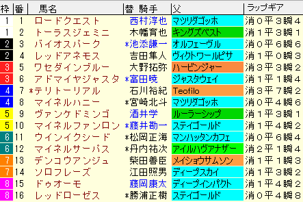 福島記念2020 枠順確定ラップギア適性値
