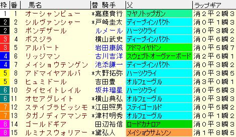 ステイヤーズS2020 枠順確定ラップギア適性値