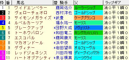 京都新聞杯2021 枠順確定 ラップギア適正値